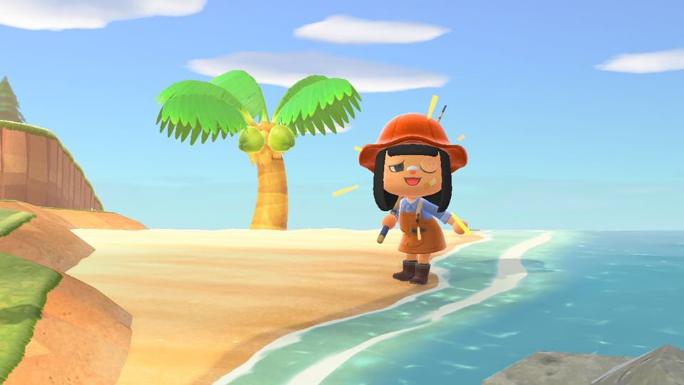 Animal Crossing: New Horizons, nintendo, switch